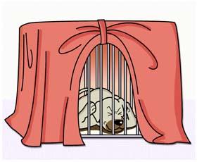 ペットいっぱい 犬の飼い方・しつけ方Q&A 花火や雷でパニックになる