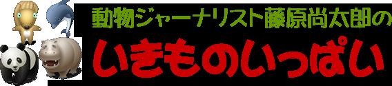 ぺっといっぱい : 藤原尚太郎のどうぶついっぱい